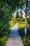 Summer landscape with wooden pathway stock photo