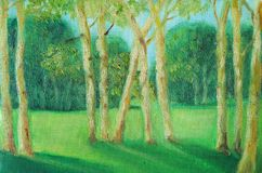 Summer landscape with young trees in the foreground. A small grove in front of a meadow and a forest. Summer day. Young trees royalty free illustration