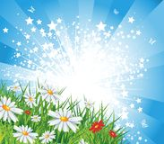 Summer lanscape. Summer landscape with star burst, eps10 vector illustration Royalty Free Stock Photography