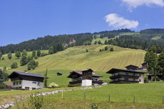 Summer lanscape in Austrian alps Royalty Free Stock Image