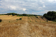 Summer lanscape with fields after harvest Stock Photo