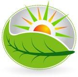 Summer leaf logo Stock Photos