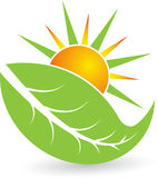 Summer leaf logo Stock Image