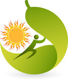 Summer leaf logo Royalty Free Stock Photos