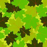 Summer leaf pattern Royalty Free Stock Photos