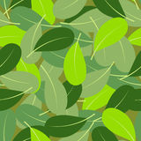 Summer leaf seamless pattern Royalty Free Stock Photo