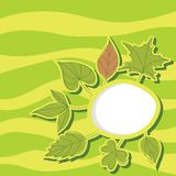 Summer leaves background illustration Royalty Free Stock Photos