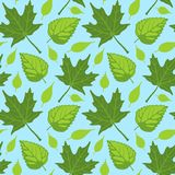 Summer Leaves seamless Royalty Free Stock Photos