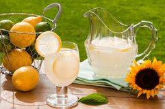 Summer Lemonade. Glass & jug of lemonade on rustic table outdoors with wire basket of fruit - ladybug beginning to climb up foot of glass Stock Photo