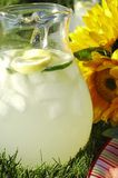 Summer Lemonade Stock Images