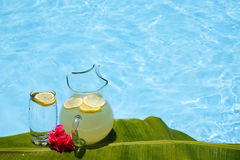 Summer Lemonade. Glass and Jug of lemonade by bright swimming pool with tropical leaf royalty free stock photos