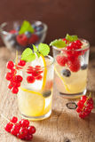 Summer lemonade with berry and lemon Royalty Free Stock Photography