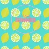 Summer lemonade juice Royalty Free Stock Photography