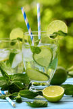 Summer lemonade mojito. Royalty Free Stock Photo