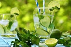 Summer lemonade mojito. Stock Image