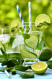 Summer lemonade mojito . Stock Photography