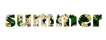 Summer lettering made of daisy flowers field royalty free stock image