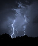 Summer lightning bolt. At night in Florida royalty free stock photography