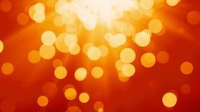 Summer lights stock video