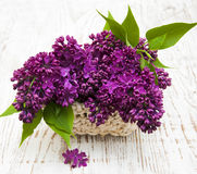 Summer lilac flowers in basket Royalty Free Stock Photos