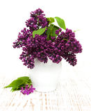 Summer lilac flowers in vase Royalty Free Stock Photography