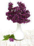 Summer lilac flowers in vase Stock Images