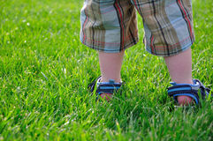 Summer - Little Boys Feet Standing in Green Grass. A little boy stands in a field of green grass.  This image evokes summer, fun and kids playing outside.  There Stock Photography