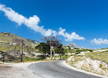 Summer  Llogara pass (Albania) Stock Photos