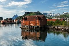 Summer in Lofoten Stock Image