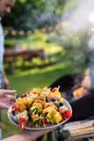 Summer. A man prepares a bbq to welcome friends in the garden. In summer. A couple prepares a bbq to welcome friends in the garden. Close-up on a plate of grill stock image