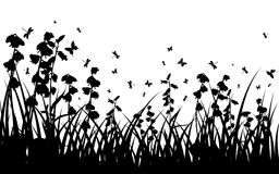 Summer meadow. Vector grass silhouettes background for design use. 16:10 Stock Images