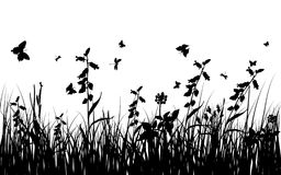 Summer meadow. Vector grass silhouettes background for design use. 16:10 Royalty Free Stock Photos