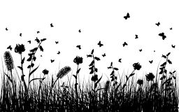 Summer meadow. Vector grass silhouettes background for design use. 16:10 Royalty Free Stock Photography
