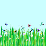 Summer meadow. Butterflies and dragonflies flying above grass and flowers Royalty Free Stock Photography