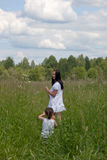 On a summer meadow Royalty Free Stock Images