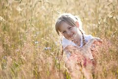Summer in a meadow Stock Photo