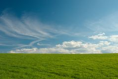 Free Summer Meadow Royalty Free Stock Photos - 6454118