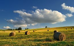 Hay bales on the field after harvest, Hungary Royalty Free Stock Photography