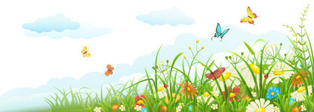 Summer meadow banner Royalty Free Stock Images