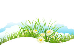 Summer meadow banner Stock Photo