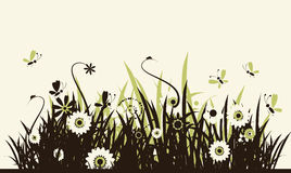 Summer meadow beautiful Royalty Free Stock Photos