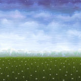 Summer meadow covered with white star flowers. (other landscapes are in my gallery Royalty Free Stock Photo