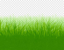 Summer meadow grunge vector background Royalty Free Stock Images