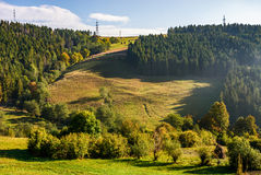 Summer meadow on hillside of mountain range. Early autumn mountain landscape. green meadow near the forest on the hillside in Carpathians Stock Images