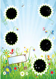 Summer meadow, insert text or photo into frames Stock Photography
