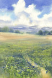 Summer meadow landscape watercolor. Summer meadow with yellow flowers landscape watercolor vector illustration