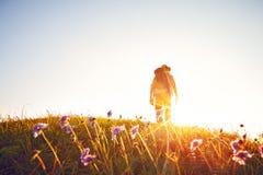 Summer meadow man backlight Stock Photo