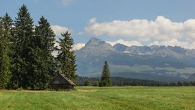 Summer meadow with old wooden cottage, mount Krivan Slovak symb stock photo