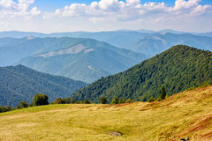 Summer Meadow On Hillside Of Mountain Range Stock Photos