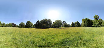 Summer meadow panorama Stock Image